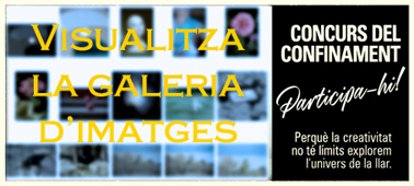 galeria_conurs_confinament_afc