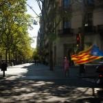CONFINAMIENTO STREET